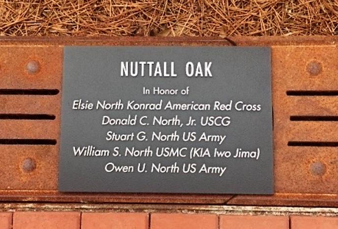 North family plaque museum oak tree.jpg