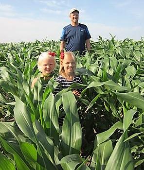 Lawton corn in 2013.jpg