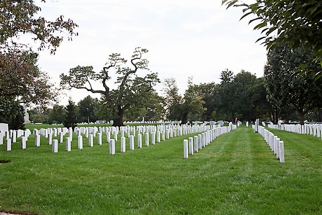3 Arlington National Cemetery.jpg