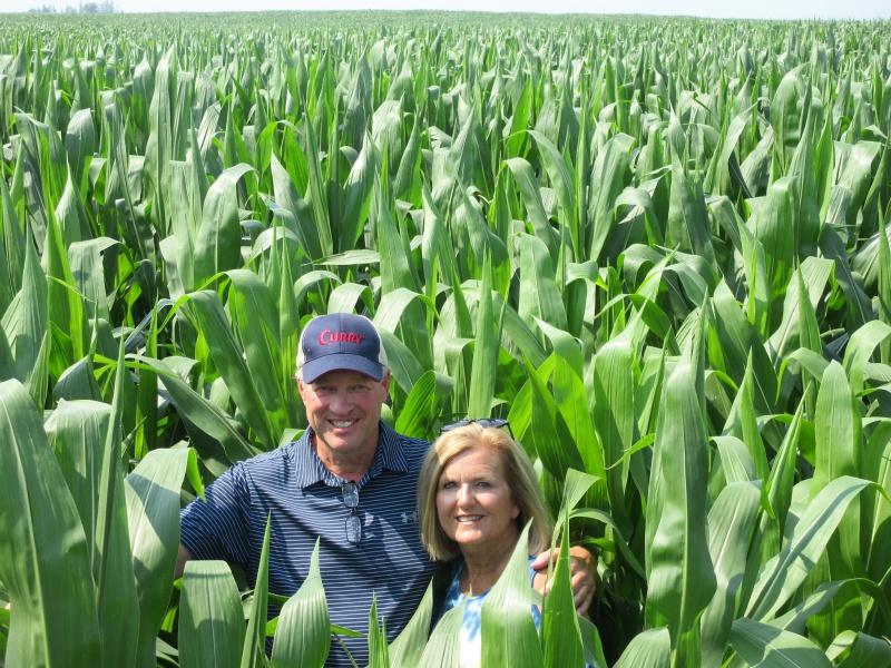 Lawtons in a lot of corn.JPG