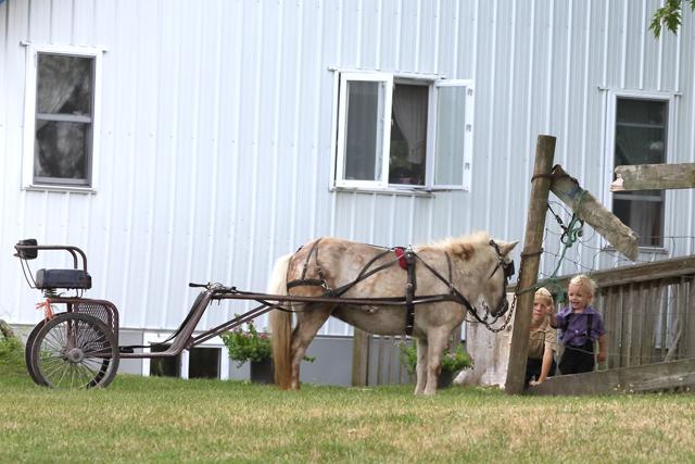 Amish Kids-4298L (3).jpg