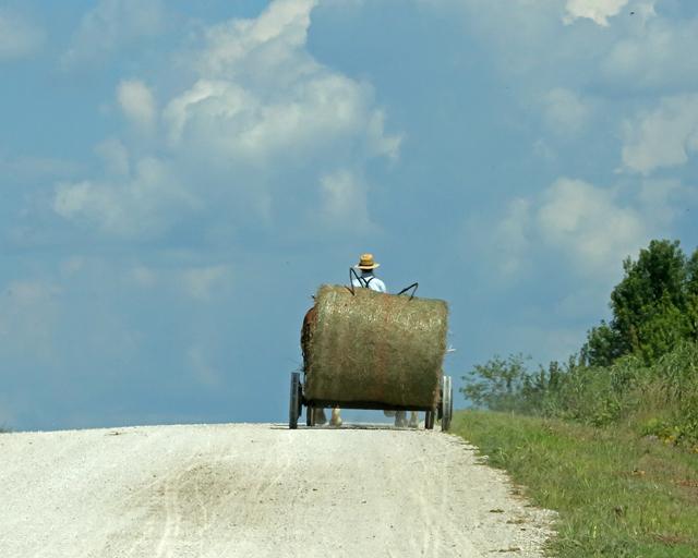 Moving Hay Bales-4314L (3).jpg