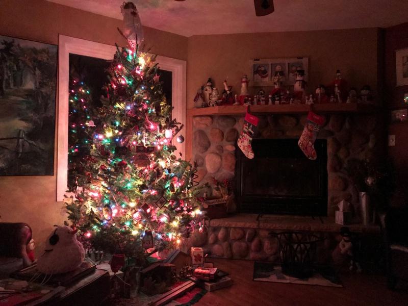 Carla's Christmas tree 2018.jpg