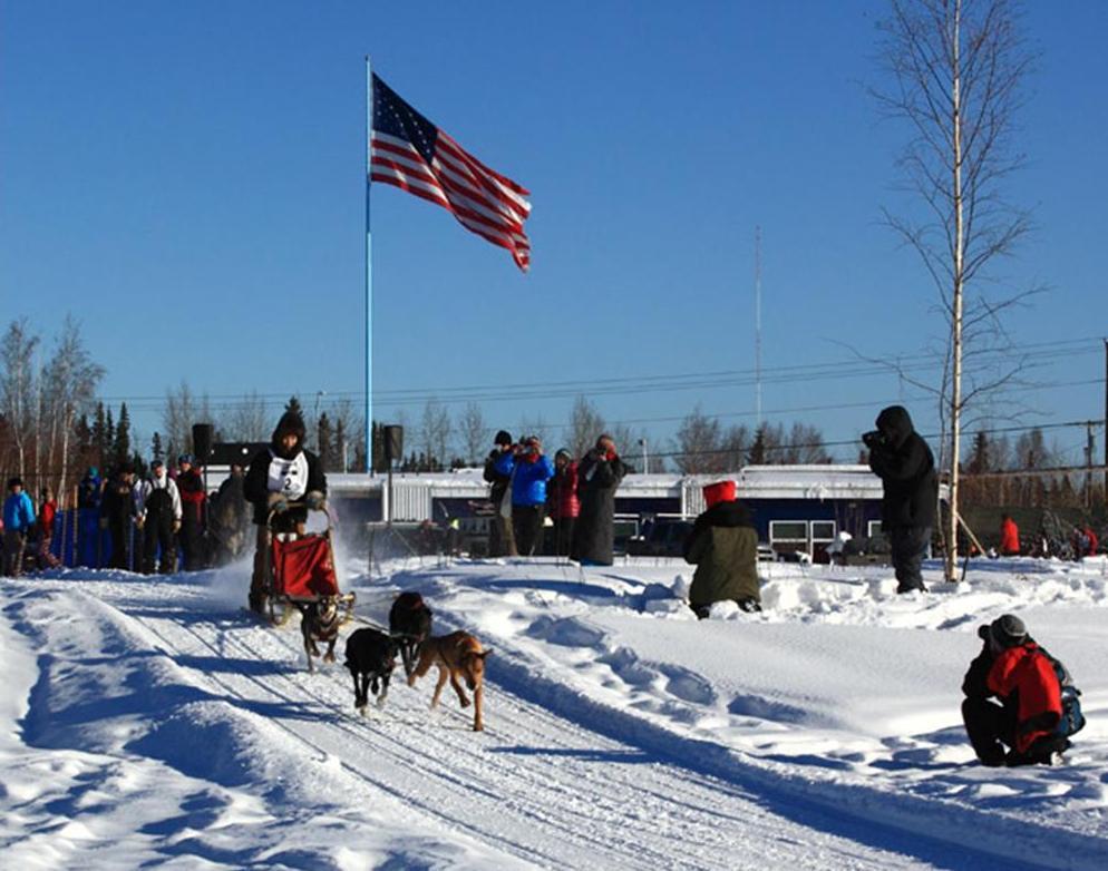 Dog sled racing 5.jpg