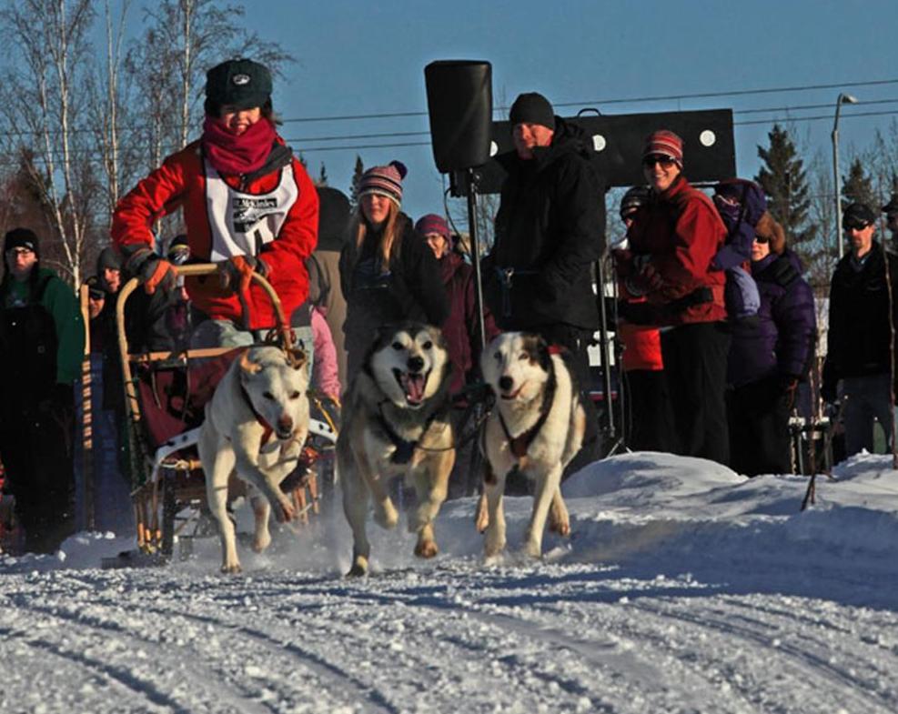 Dog sled racing 4.jpg