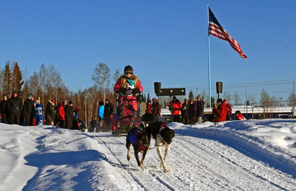 Dog sled racing 3.jpg