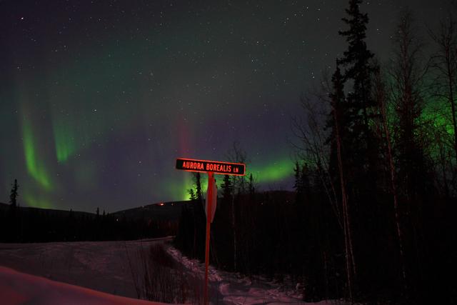North of Fairbanks, Ak-2425L.jpg