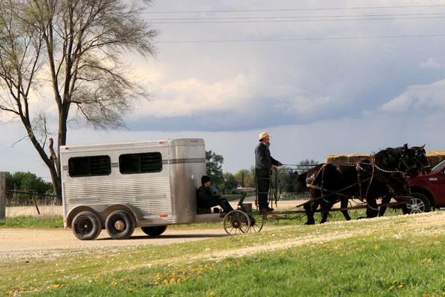 Amish Sale 14.jpg