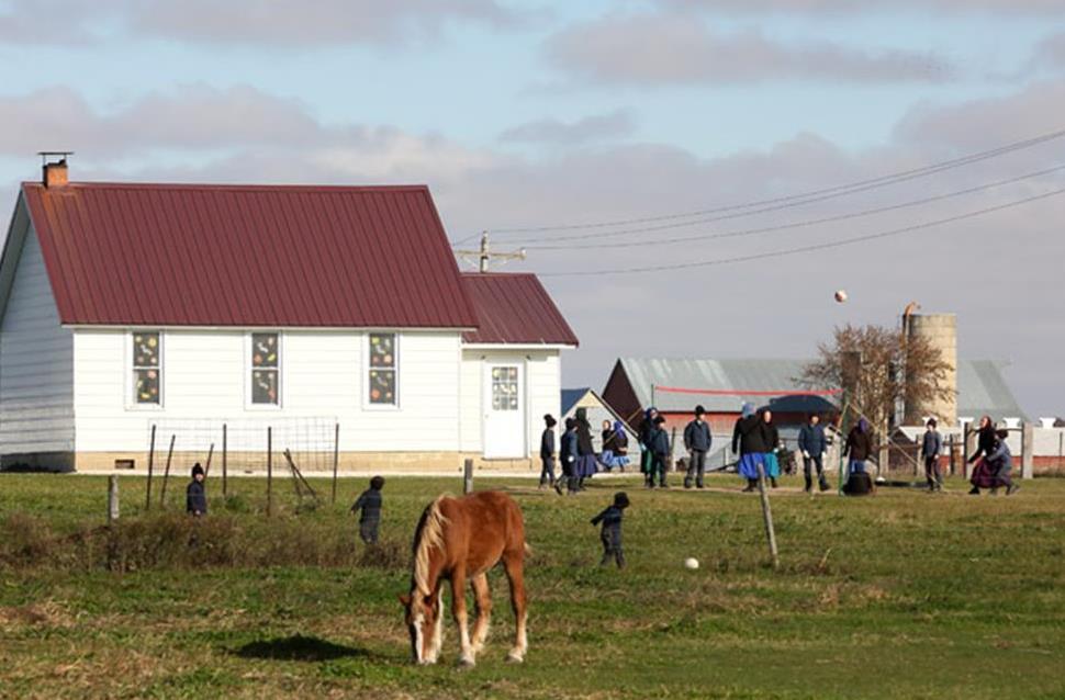 Amish 5.jpg