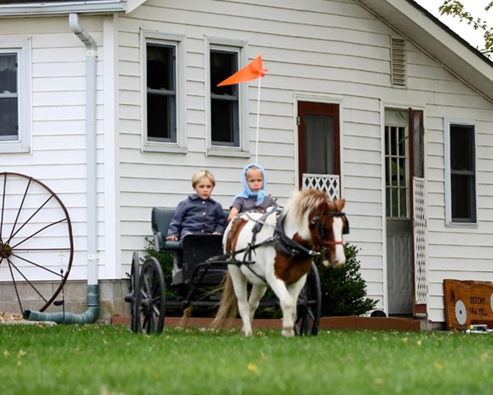 Amish 3.jpg