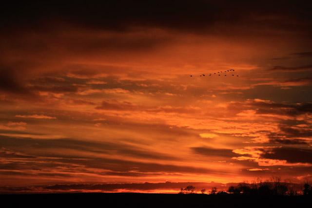 Winter Sunset 2.jpg