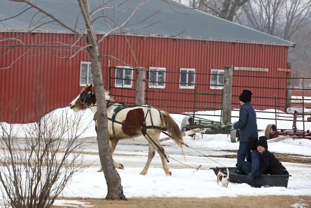 5 Amish fun in the snow.jpg