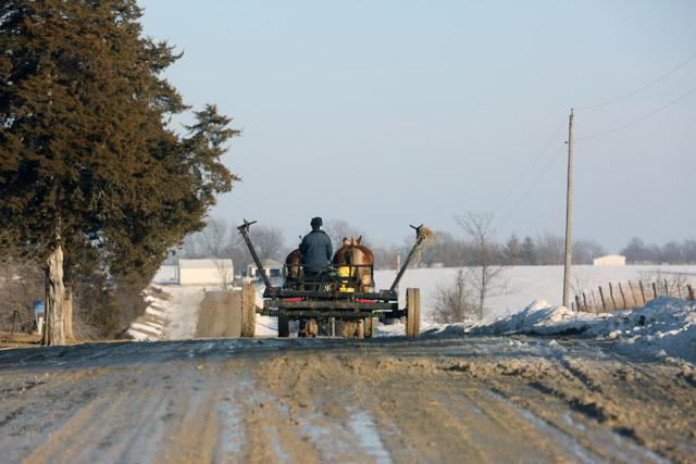 4 Amish hay loader.jpg