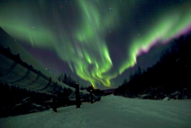 Lights above Alaska Pipeline in Fairbanks.jpg