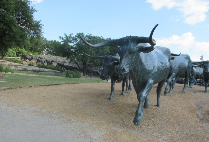 Cattle drive sculpture at Pioneer Plaza.JPG