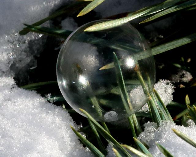 Soap Bubble 3.jpg