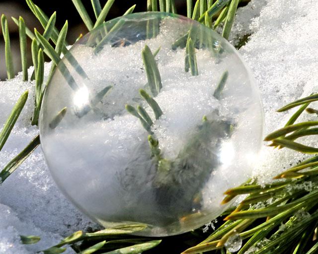 Soap Bubble 2.jpg